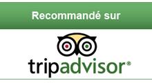 logo tripadvisor français