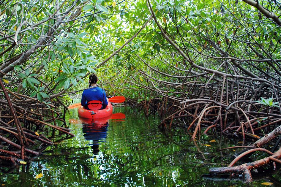 Grand Island Kayak